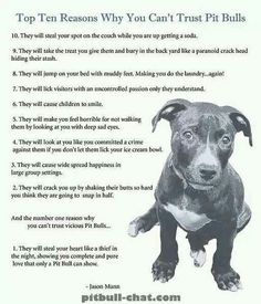 Haha so true. I love my pit-bull! She is the sweetest dog on earth! When will people stop blaming the dogs and start blaming the humans who hurt them!?