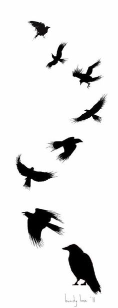 Read Complete Silhouette Flying Ravens Tattoo Design By Badmusic