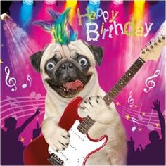 Pug Dog Rock & Roll Funny Gogglies 3D Moving Googly Eyes Birthday Greeting Card