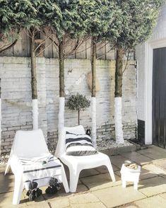 Une terrasse où les arbres sont habillés de blanc