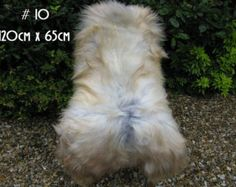 Luxury genuine EX large Icelandic sheepskin rug natural white/grey/ivory color single # 10 Sheepskin Rug, Natural Rug, Vintage Marketplace, Ivory, Rugs, Luxury, Grey, Handmade, Animals