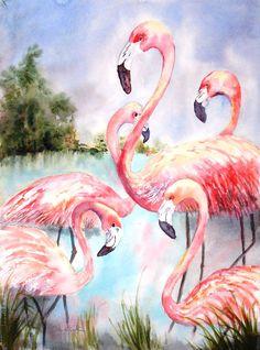 Five Flamingos | Cruising the Virgin Islands