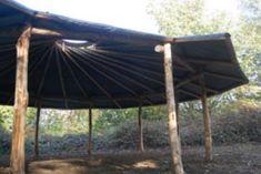 Canopy/shaded area