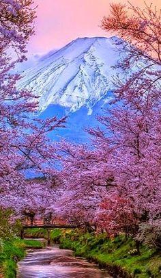 .~Mount Fuji ~ Honshu Island, Japan | Flickr - Photo by Shakira 71@adeleburgess~.