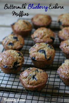 Buttermilk Blueberry Einkorn Muffins