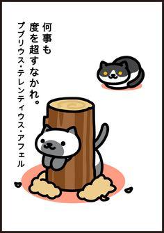 KinNeko2015112003