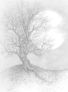 full moon with tree Wiccan, Magick, Witchcraft, Coloring Books, Coloring Pages, Moon Drawing, Ink Pen Drawings, Writing Paper, Book Of Shadows