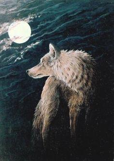 Wolf Moon  Coyote Moon