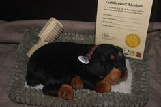 Rottweiler Puppy made by Perfect Petzzz Puppy. This auction is about to end all proceeds go to Rottweiler Rescue https://www.facebook.com/pages/Gulfstream-Guardian-Angels-Rottweiler-Rescue/172782442738491?fref=ts