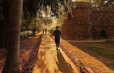 Early morning run through the ruins of Ibrahim Lodhi's tomb. During 15th century a tributary of Yamuna used to flow by the side of present day Lodhi Garden which has this tomb. The river is long gone and so is the grandeur of the emperors. The ruins now provide the much needed breathing space for Delhi-ties  Regram from @rsanyal80 #DforDelhi #indianarchitecture #indianarchitectureatitsfinest #incredibleindia #pictureoftheday #photooftheday #delhi #dilli #delhigram #dillipics  #delhi_igers…