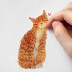 New Cats Love Illustration Kitty 34 Ideas I Love Cats, Crazy Cats, Cool Cats, Animal Paintings, Animal Drawings, Super Cat, Orange Art, Love Illustration, Cat Illustrations