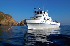 My Labor Day Plans.... - Scuba Gear Express - Boat Ticket: PEACE to Anacapa Island 3 dives 09/01/14 7:00 am Departure, $139.00 (http://www.scubagearexpress.com/boat-ticket-peace-to-anacapa-island-3-dives-09-01-14-7-00-am-departure/)
