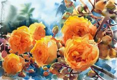 Watercolor And Ink, Watercolor Flowers, Watercolor Paintings, Art Flowers, Watercolors, Paul Jackson, 1 Rose, Flower Power, Still Life