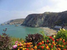 ST Agnes, Cornwall, UK North Cornwall, Devon And Cornwall, Cornwall England, England Uk, St Agnes, Seaside Holidays, South Devon, Fishing Villages, British Isles