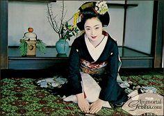 Maiko - Postcards form the 1960's - Mineko Iwasaki -