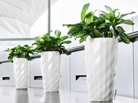 Pin On Best Planters Ideas