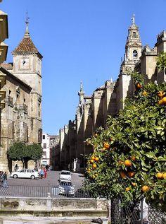 Córdoba ~ by Arnim Schulz, via Flickr ~ Barrio de la Juderia, Cordoba, Andalusia