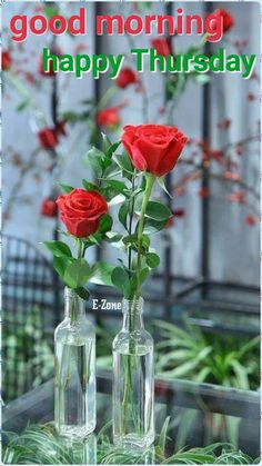 Good Morning Happy Thursday, Love Rose, Rose Cottage, Ruby Rose, Good Morning Images, Ikebana, Decoration, Red Roses, Beautiful Flowers