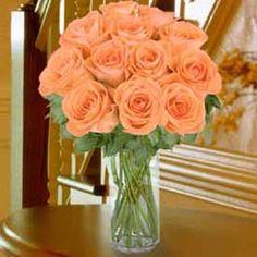 Peach roses. My favorite!!!!!!!!!!!!!!!!!!!!!