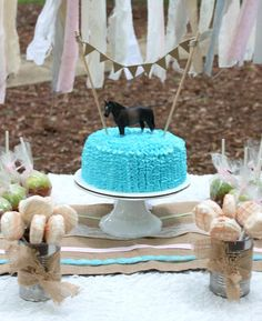 Vintage Horse Theme Birthday Party Ideas | Photo 11 of 30 | Catch My Party