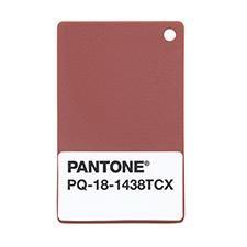 Pantone's 2015 Color of the Year: Marsala PANTONE PLASTIC STANDARD Chips