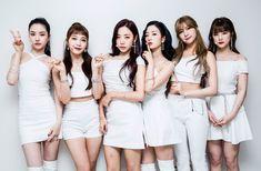 Photo album containing 18 pictures of Apink Cnblue, Minhyuk, South Korean Girls, Korean Girl Groups, Pink Panda, Seohyun, Cube Entertainment, Girls Generation, Mini Albums