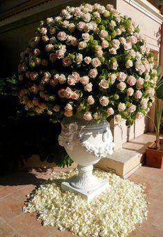 Meijer Roses in decoratie Traverso Fleuriste Marco Traverso in bijzijn prins Albert van Monaco