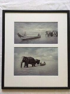 Original Photographs Diptych Buddhist Monks & Asian Elephants Mounted & Framed | eBay Dugout Canoe, Asian Elephant, Buddhist Monk, Elephants, Photographs, The Originals, Frame, Painting, Animals
