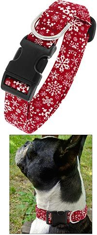 Snowflake Dog Collar at The Animal Rescue Site