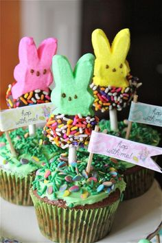 Chocolate Dipped Peeps!! ~ YUMMMM!