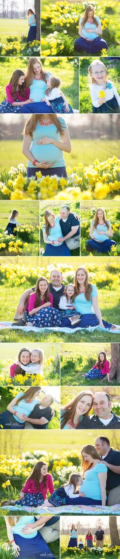 Maternity photo session in daffodils