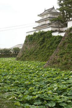 Shimabara castle, Nagasaki, Japan、長崎県島原市