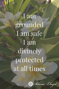 Affirmation: I am grounded, I am safe, I am divinely protected at all times