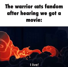 The warrior cats fandom after hearing we got a movie: Mmmmm....the fandom is always alive ....