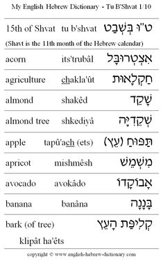 The main benefit of learning a second language is that of being able to communicate with others in their native language. Hebrew is considered to be one of the most difficult languages to learn and requires a lot of study but once mas Learn Hebrew Alphabet, English To Hebrew, Words To Live By Quotes, Learning A Second Language, Hebrew Words, Words To Use, Word Study, Torah, Cristiano