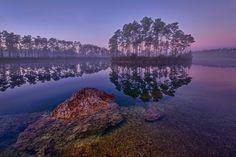 Dawn at Long Pine Key Lake in Everglades National Park near Homestead, Florida.