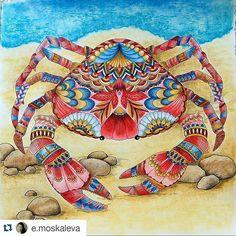 milliemarottabooks (Millie Marotta coloridos) on Instagram
