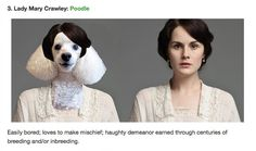 List Of The Day: If Downton Abbey Characters Were Dogs (Of The Day)