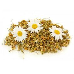 Chamomile Tea Chamomile Tea Health Benefits      Better Sleep     Chamomile tea's most well-known benefit is as a sleep aid. It is known for its relaxing and soothing properties and is often taken before bed to promote restful sleep.     Stomach Soother     Chamomile is helpful for more at http://www.asclepius-herbs.nl