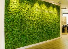 Green Moss wall in office reception with company logo Jardin Vertical Artificial, Vertical Green Wall, Moss Wall Art, Green Office, Creation Deco, Plant Wall, Office Interior Design, Green Plants, Wall Design