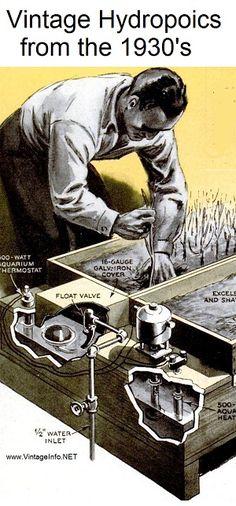 "1930's Hydroponics!! ""Tank Gardening""."
