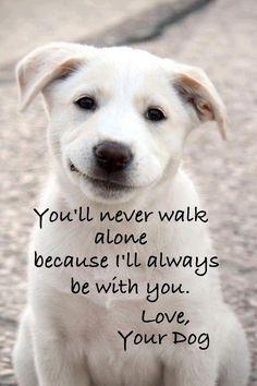 Never walk alone~
