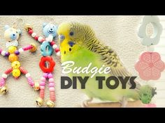 How to make Budgie Toys | DIY Toys Under 10$ - YouTube Diy Budgie Toys, Diy Bird Toys, Budgie Parakeet, Diy Toys, Parakeets, Parrots, Baby Budgies, Homemade Bird Toys, Best Pet Birds