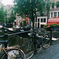 Tips on what to see in #Amsterdam this summer!