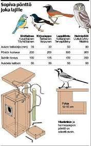 Kuvahaun tulos haulle linnunpönttö