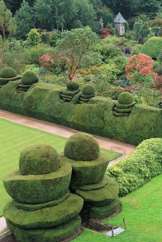 Topiary at Crathes Castle, a 16th century castle near Banchory in the Aberdeenshire region of Scotland.