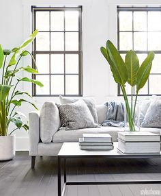 An old Montreal home gets a clean-lined, open design update | Style at Home