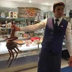 #PortHercule #kingcrab #centollo #crabedukamtchatka #seafood #russia #kamtchatka by gerardalbasoler from #Montecarlo #Monaco