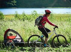 Top Bike trailers | Bike trailer Buying Guide – Consumer Reports