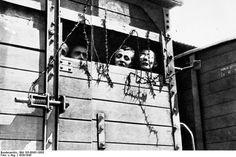 Aus allen von den Nationalsozialisten besetzten Ländern Europas und aus dem Deutschen Reich rollen die Züge in die Vernichtungslager. (© Bundesarchiv, Bild 183-68431-0005)